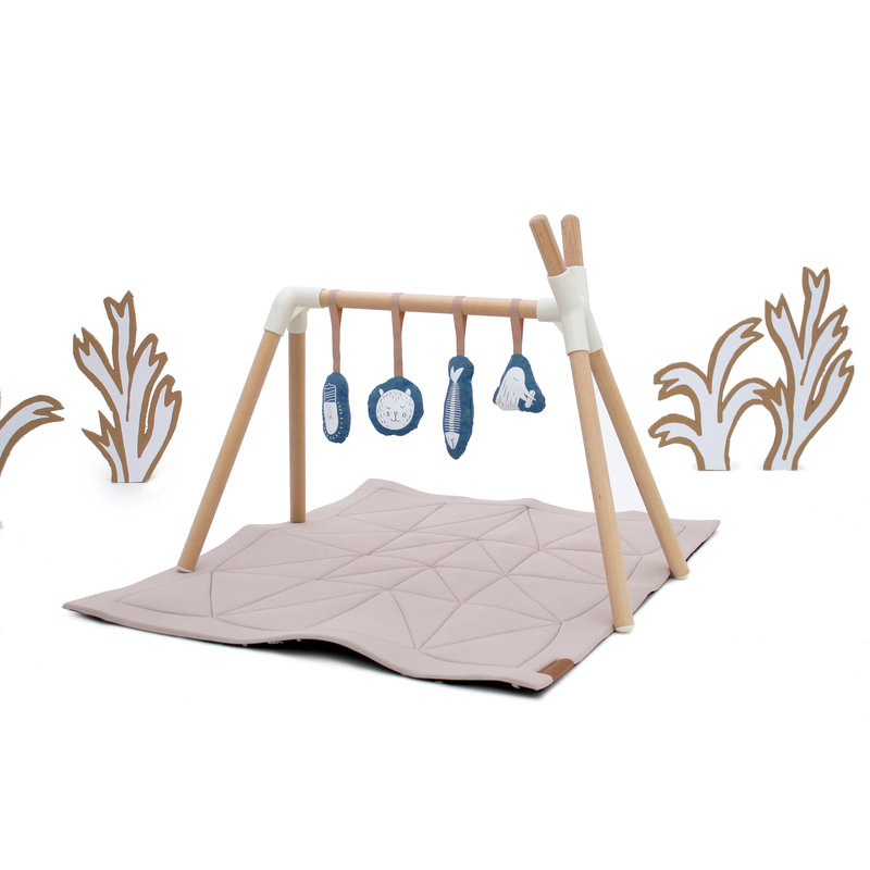 Hangloose Baby Play Gym