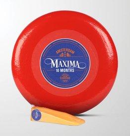 Maxima - 10 mois