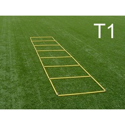 T1 Tanner boucle Ladder