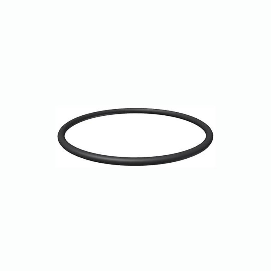 Starline ionisator O-ring T.B.V container-1