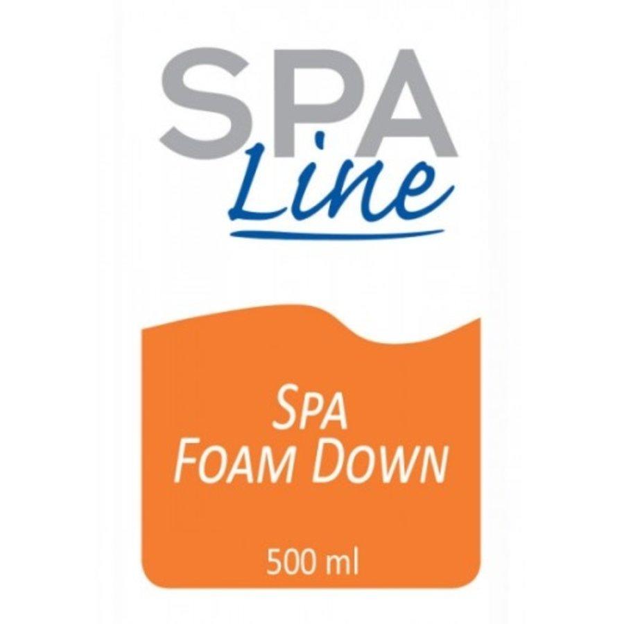 Spa Foam Down-2
