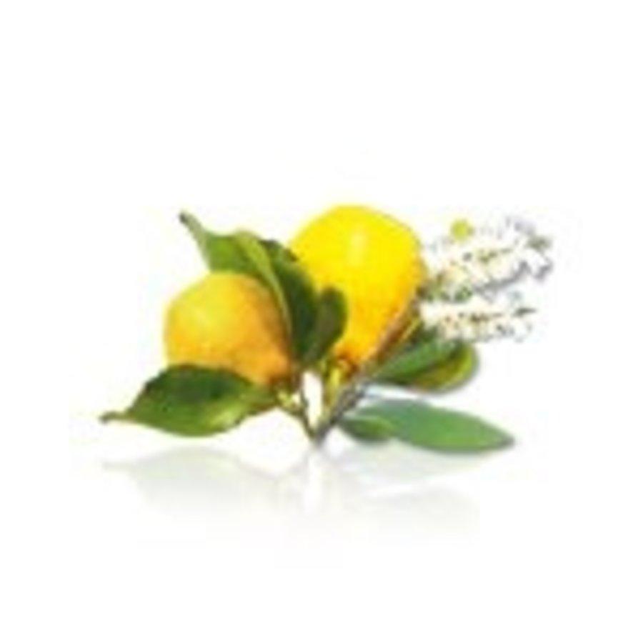 Camylle Velours de Spa - Cajeput / Citron-2