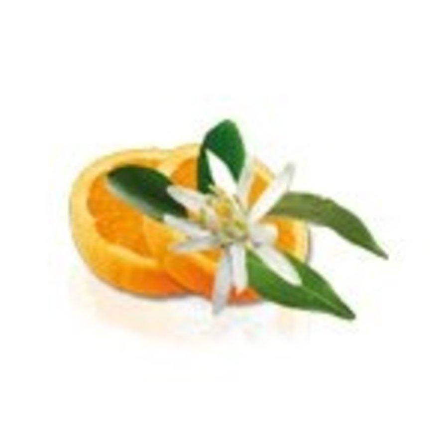 Camylle Velours de Spa - Fleur d'Oranger-2
