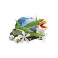 thumb-Camylle Velours de Spa - Polynésie-2