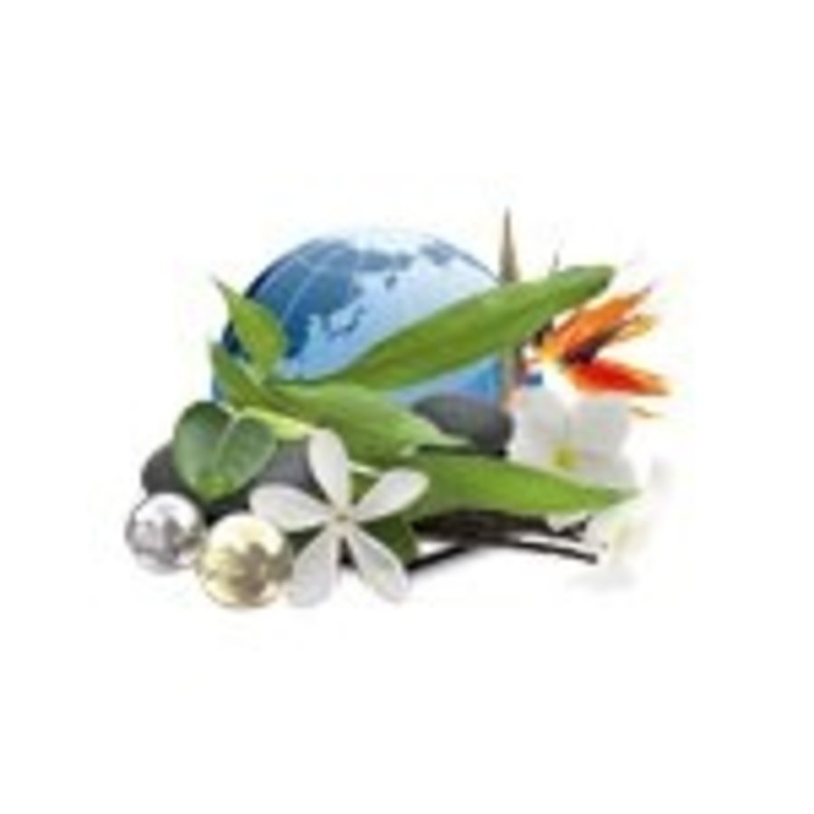 Camylle Velours de Spa - Polynésie-2