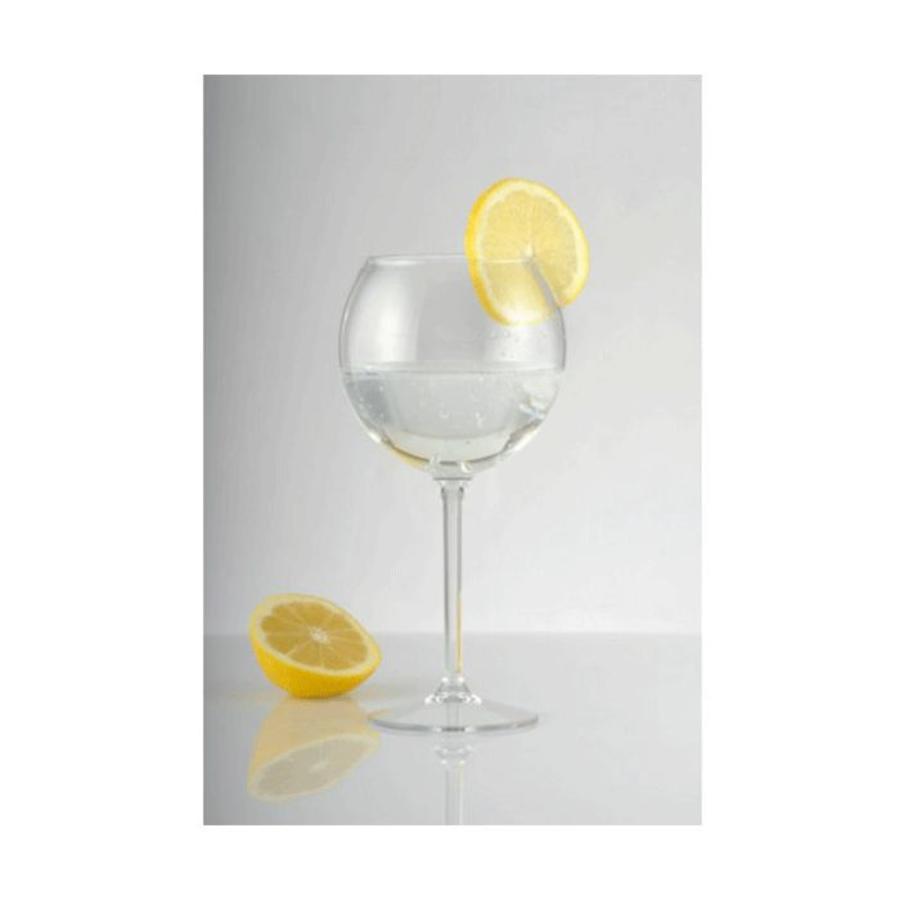 Cocktail glas - set van 2-2