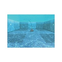 thumb-Dolphin Zenit 20 bodemzuiger-3