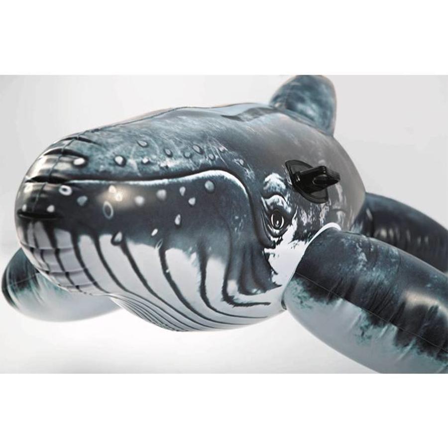 Intex realistische orka - opblaas orka-2