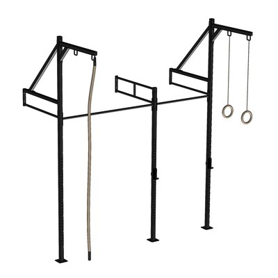 PTessentials Wall Mount Crossfit Rig V24