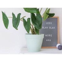 thumb-Letterbord vierkant hout grijs-2