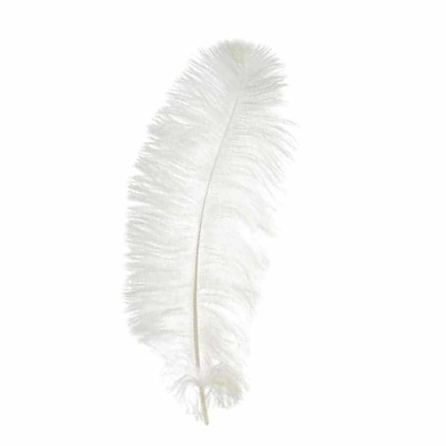 Witte veren (55-60 cm)-1
