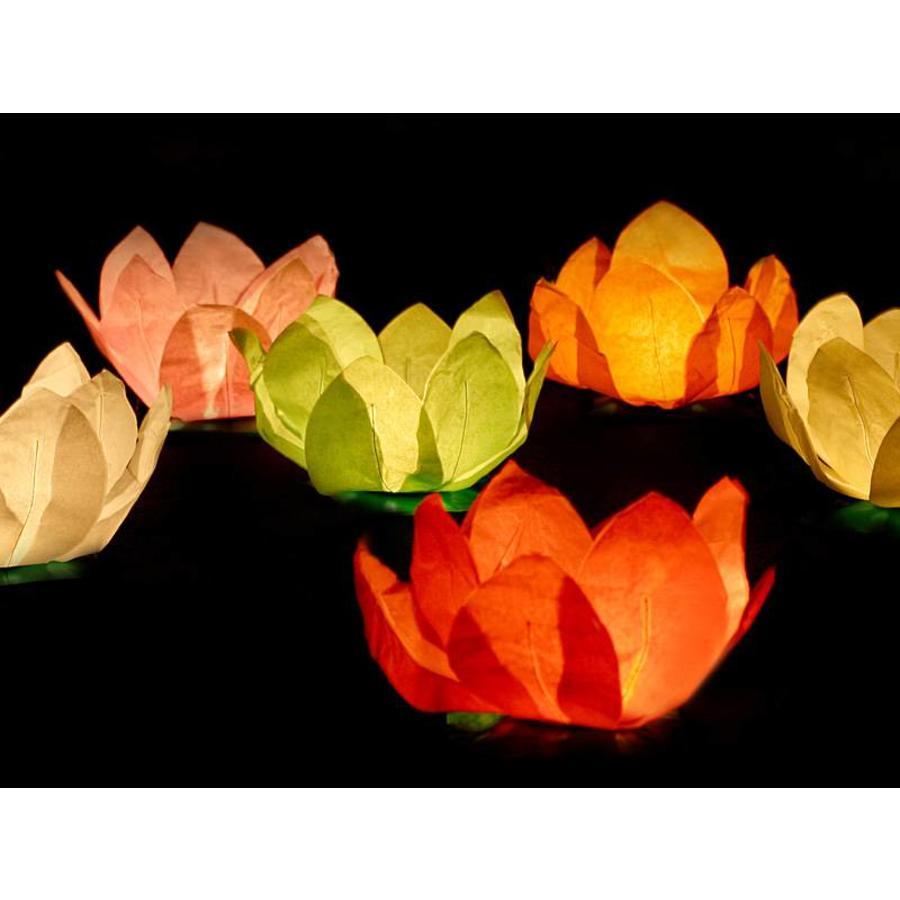 Drijvende lantaarns (6 stuks)-2