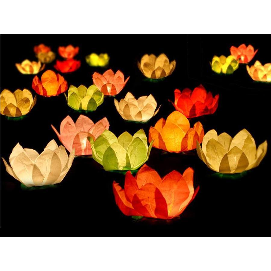 Drijvende lantaarns (6 stuks)-1