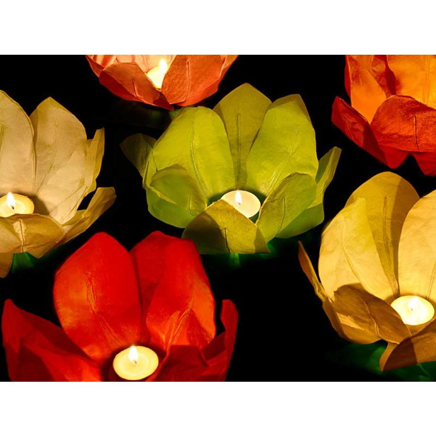 Drijvende lantaarns (6 stuks)-3