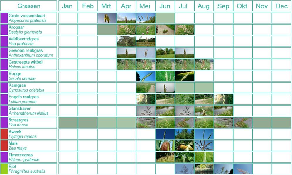 Graspollen kalender