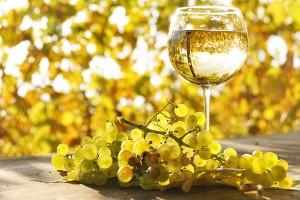 Tips voor de Chardonnay liefhebber