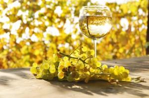 Wat is nou droge wijn?