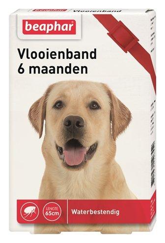 Beaphar vlooienband hond Rood