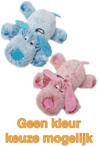 Harige hond roze/blauw