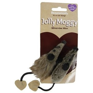 Jolly moggy Jolly moggy silvervine muis