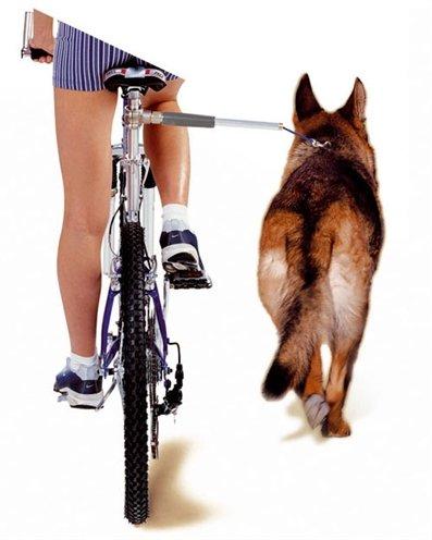 Walkydog fietsbeugel voor de hond Complete Set