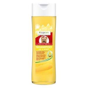 Bogacare Bogacare shampoo oil & shiny