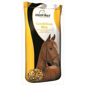 Equifirst Equifirst condition mix