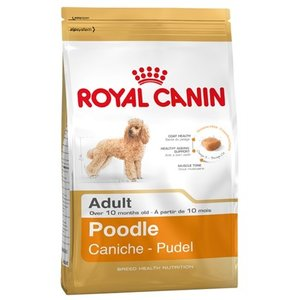 Royal canin Royal canin poodle