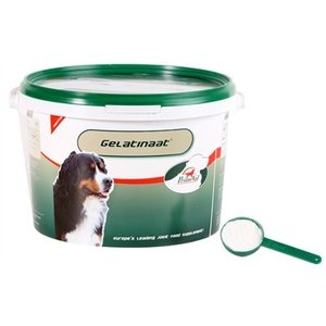 Primeval Primeval gelatinaat hond