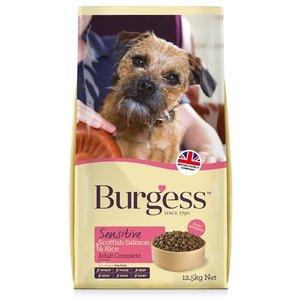 Burgess Burgess dog sensitive schotse zalm / rijst