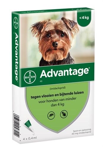 Bayer Advantage 40 Hond