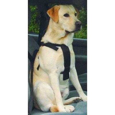 Merkloos Wandel- en autoharnas hond