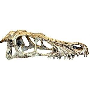 Komodo Komodo raptor schedel