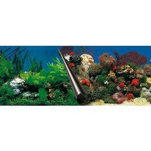 Ebi Ebi foto achterwand stone+coral