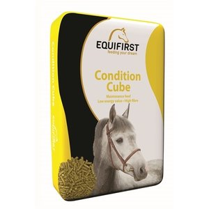 Equifirst Equifirst condition cube