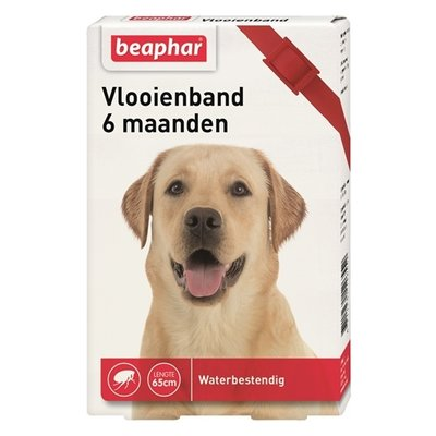 Beaphar Beaphar vlooienband hond rood 6 mnd