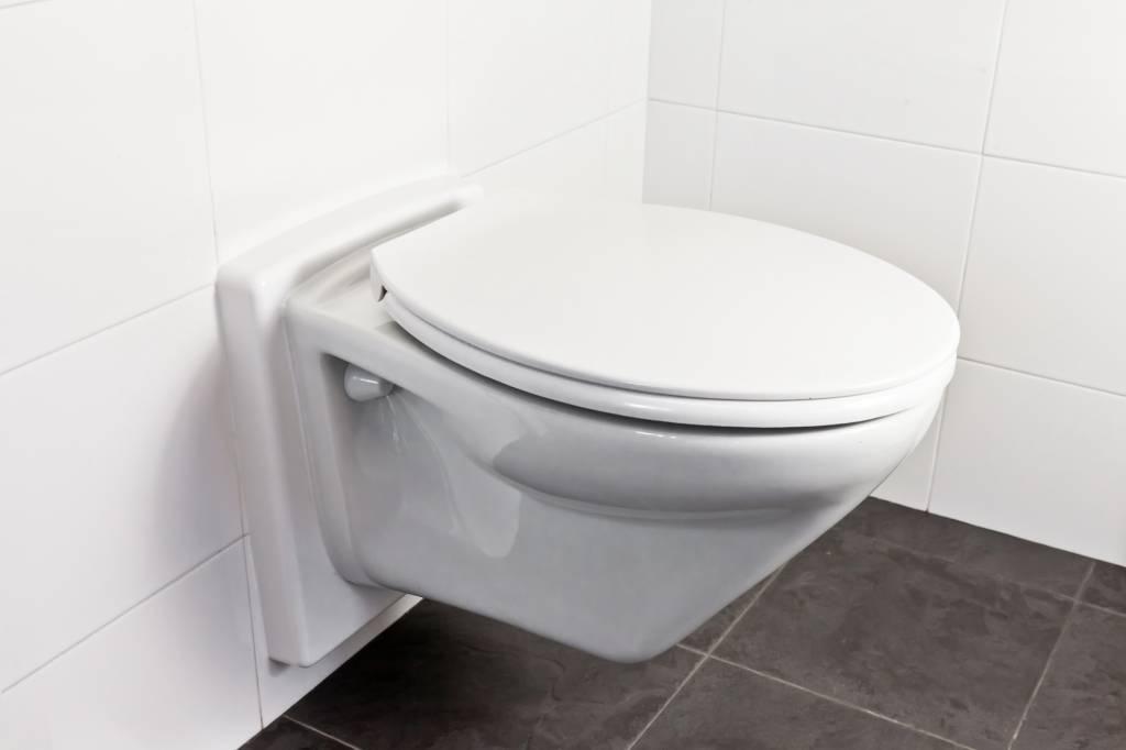 Onderdelen Hangend Toilet : Releveler toiletverhoger voor hangtoilet geen breekwerk