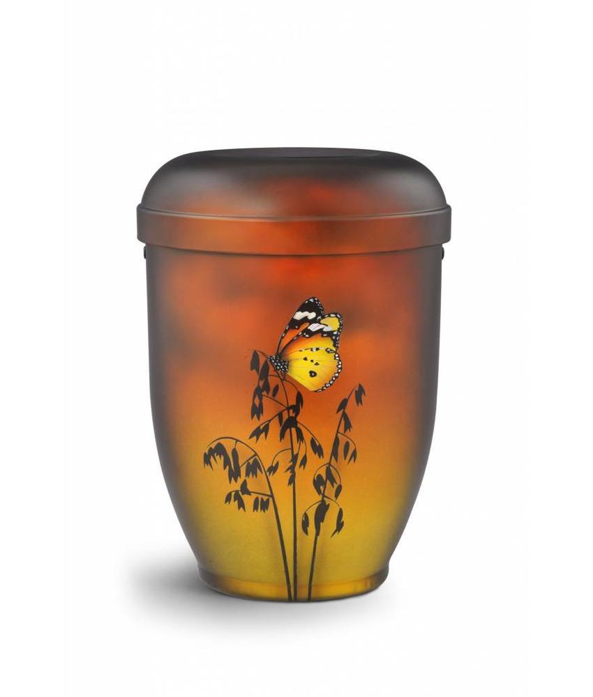 Butterfly urn - bio