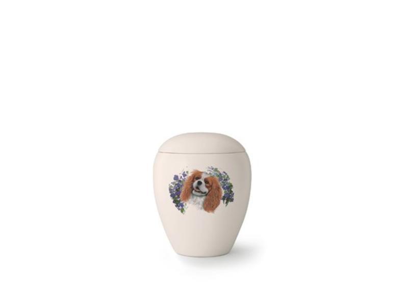 Hondenurn King Charles Spaniël - keramiek