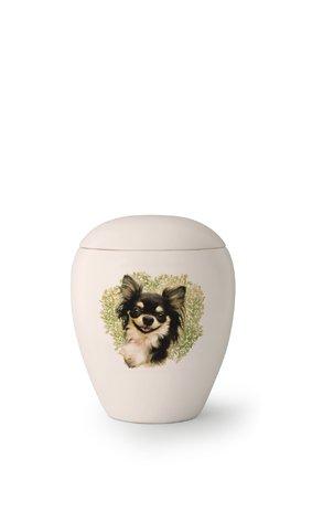 Hondenurn Chihuahua - keramiek