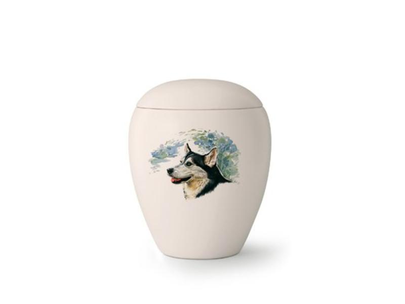 Dierenurn Border Collie - keramiek