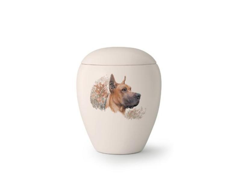 Hondenurn Deense Dog - keramiek