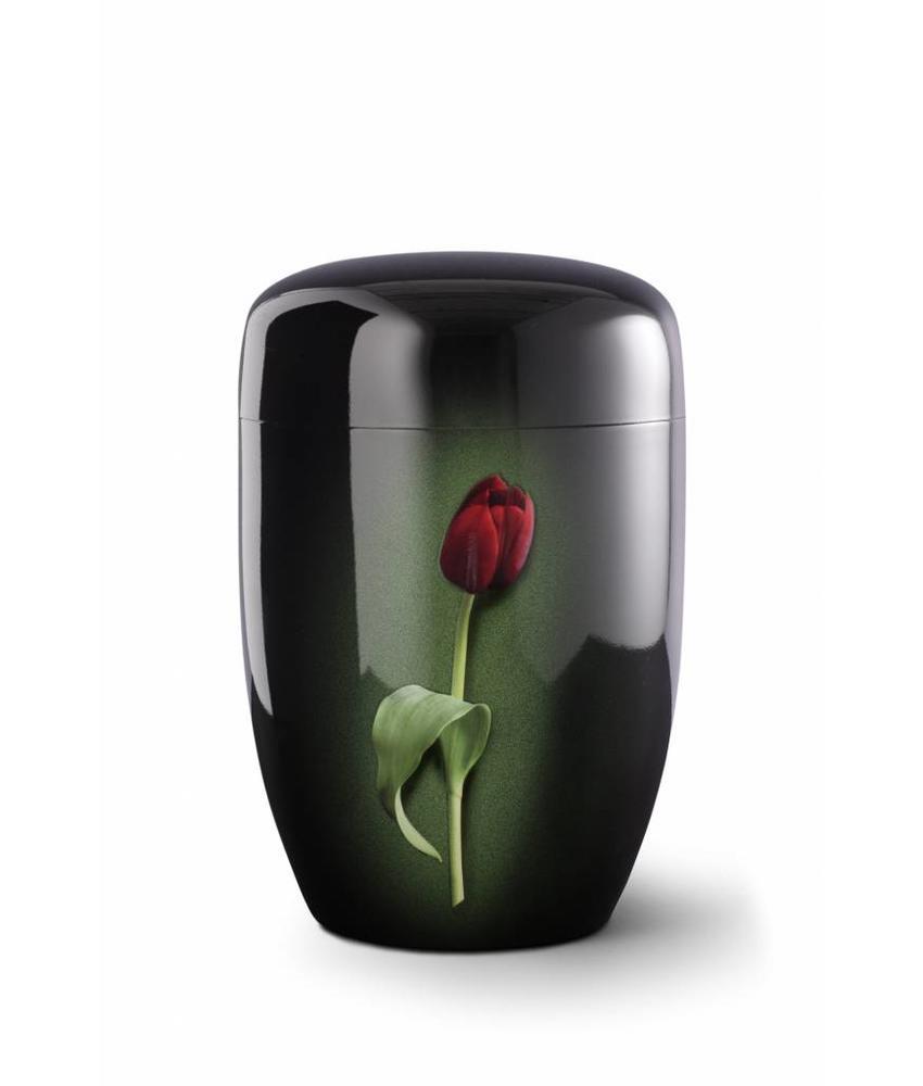 Rode tulp zwart - staal