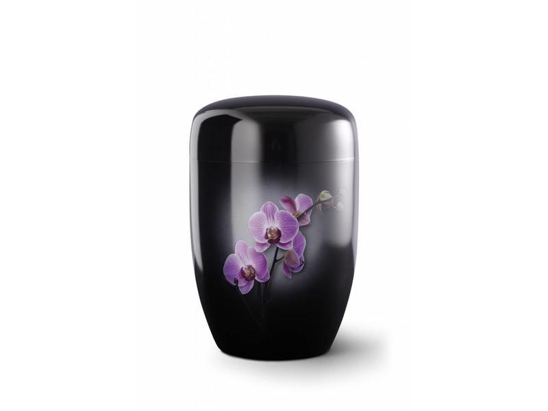 Orchidee zwart - staal