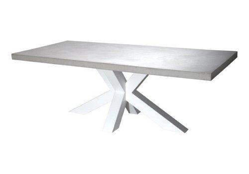 Betonnen tafel met witte matrix poot