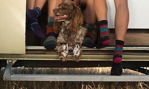 Merino Socken für Damen