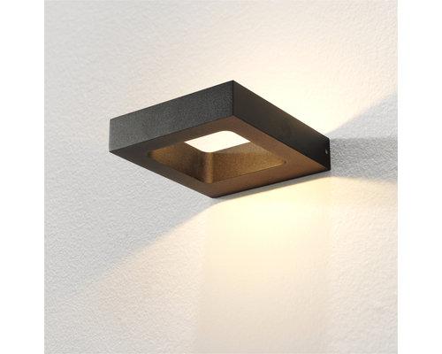 Light Gallery CARU