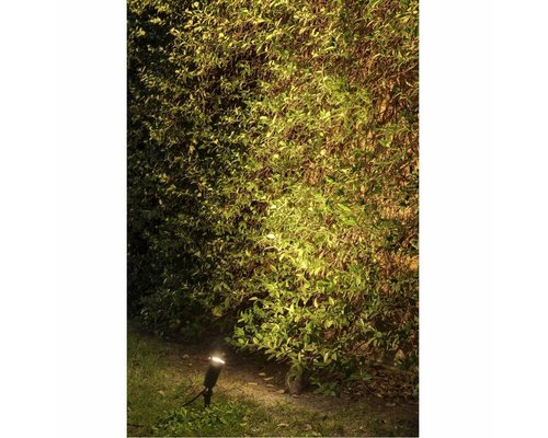 Light Gallery Toni spike zwart