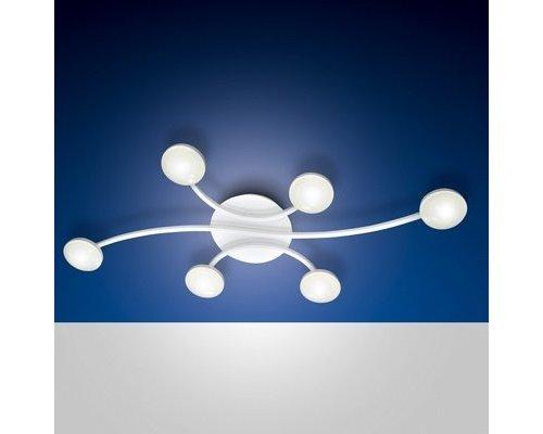 Light Gallery SWAN