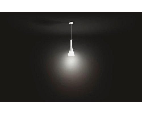 Philips Hue HUE Explore White Ambiance hanglamp LED 1xE27/9,5W 806lm wit + switch